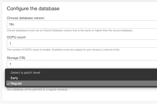 Screenshot of additional configuration menu option to set patch level for a new instance or clone.